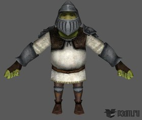 Shrek Knight