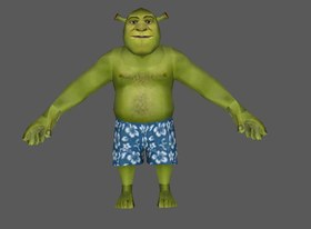 Shrek Swim Trunks